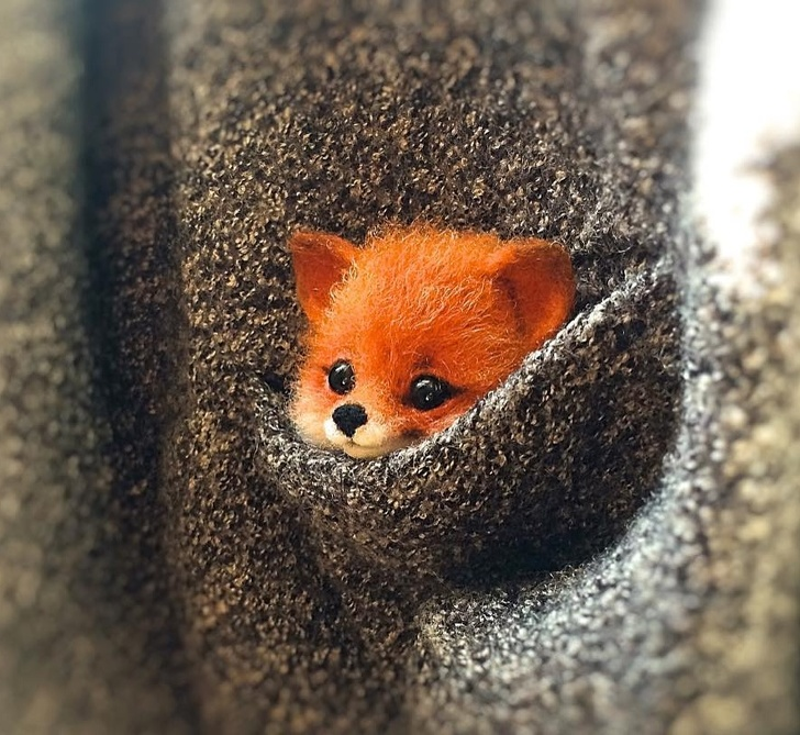 Tiny Animals From Wool - Foxes