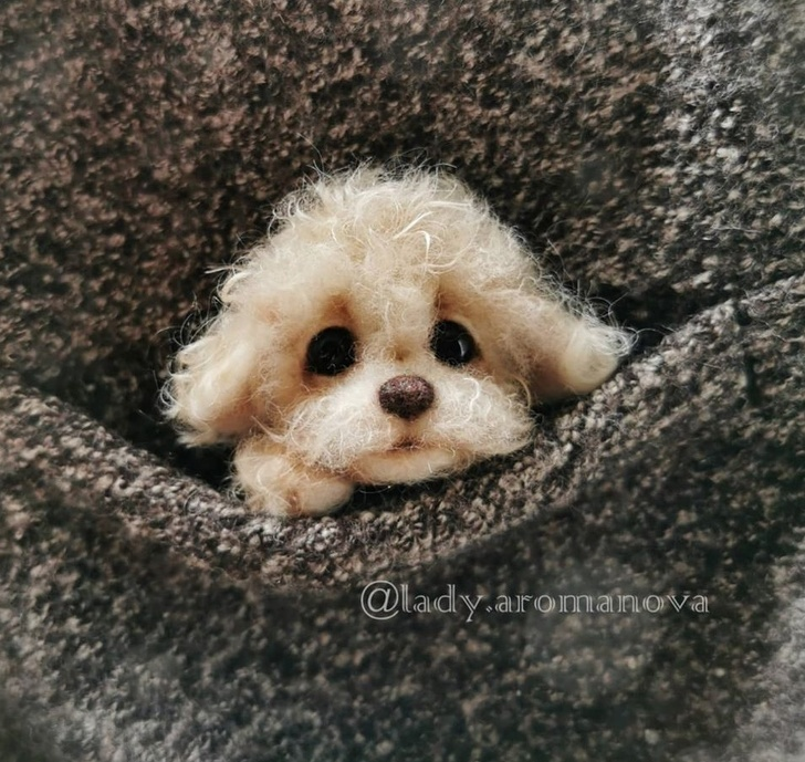 Tiny Animals From Wool - Adorable Dogs