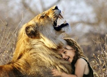 A small girl with a lion hugging